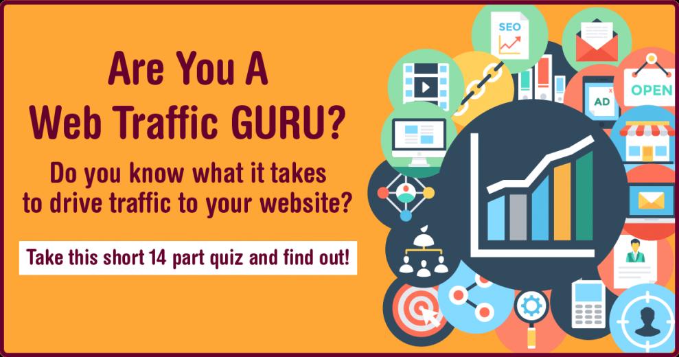 QUIZ - Are You A Web Traffic Guru